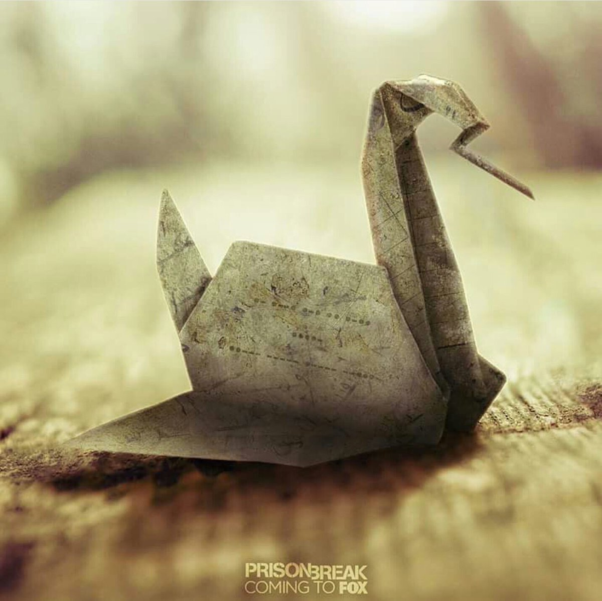How To Make The Real Prison Break Origami Swan Origami Tutorial