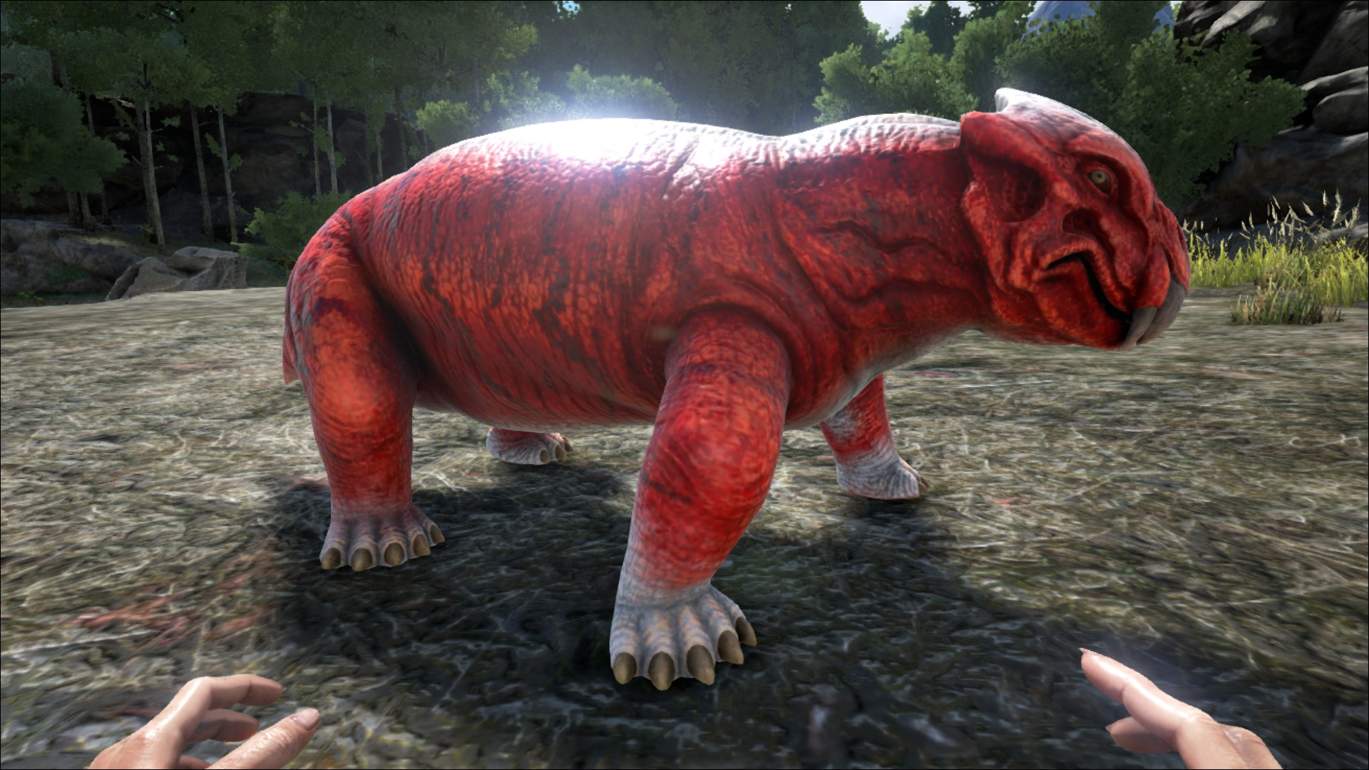 Ark survival evolved how to tame the 6 best beginner dinos player forumfinder Image collections