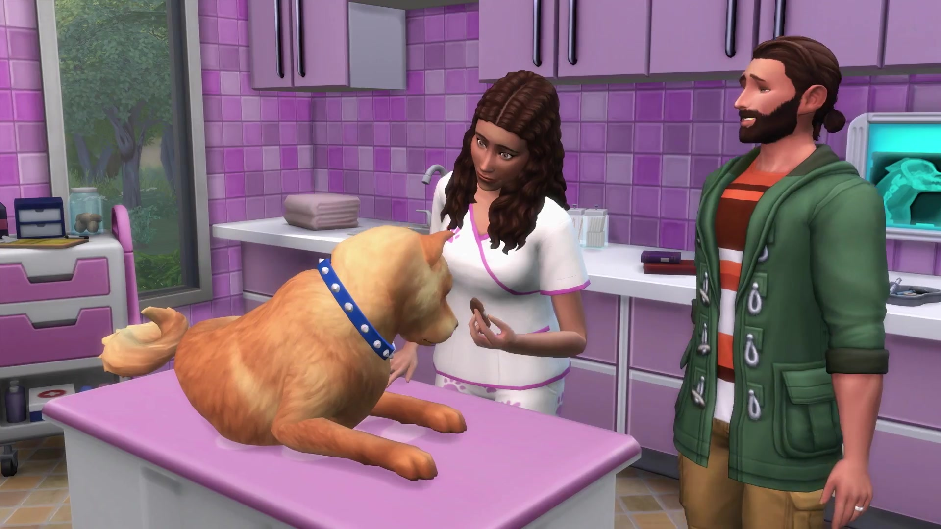 How to get a pet in Sims 4 Waiting for additions