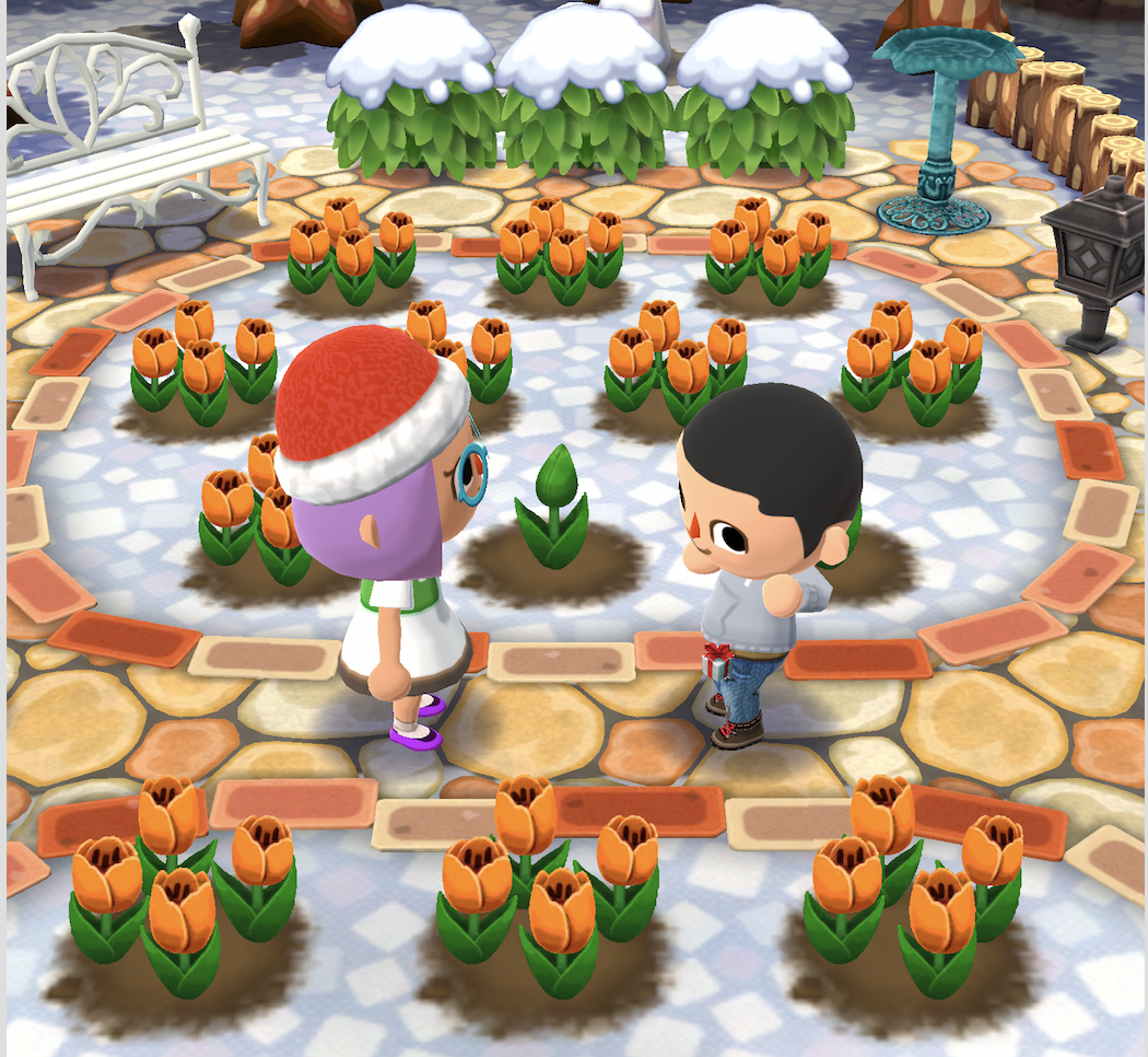 Animal Crossing Pocket Camp Flower Guide How To Plant Water Cross Pollinate In Latest Garden Update Player One
