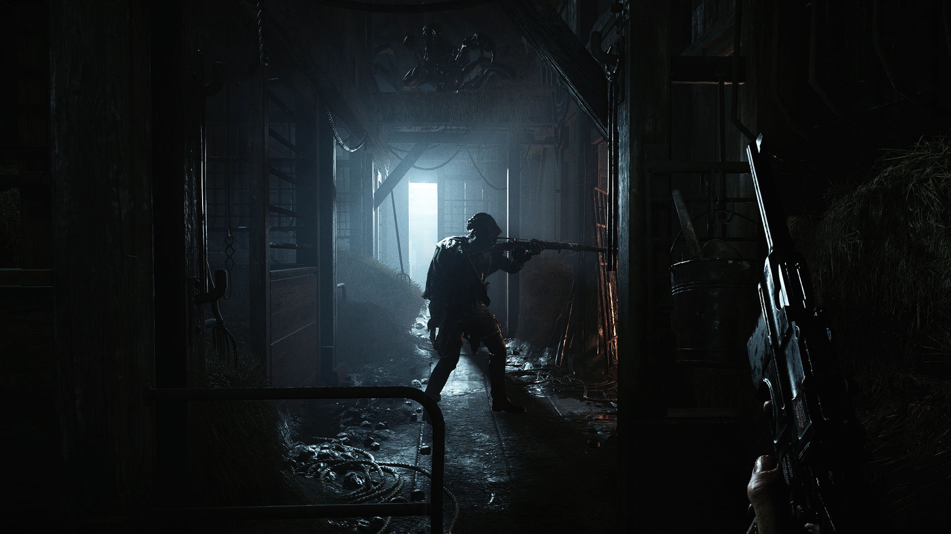 Game Hunt: Showdown 2019 18