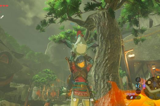 Breath Of The Wild Cucco Locations Kakariko Village Hiding Spots For All 10 Lost Birds Player One