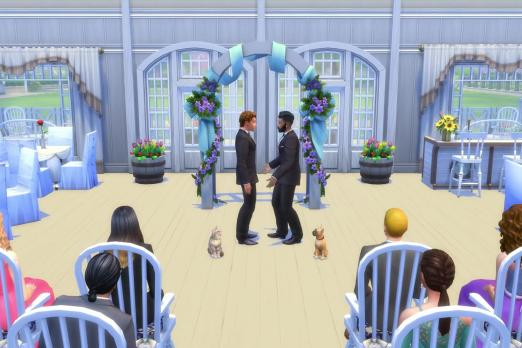 Sims Cats And Dogs Release Date And Time