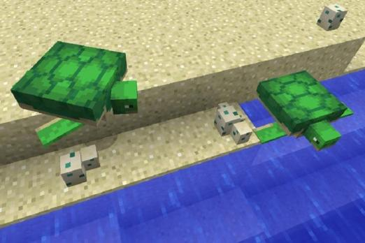 Minecraft Turtles