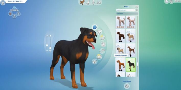 Sims  Cats And Dogs Lhasa Apso