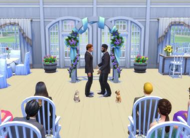sims 4 cats dos